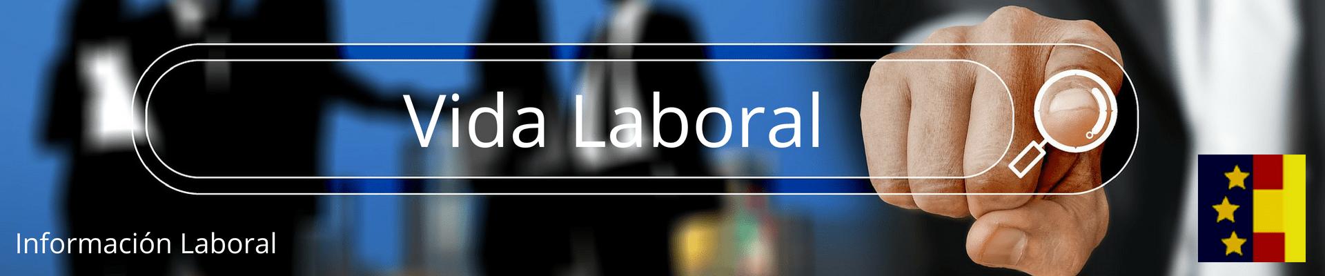 Vida Laboral instantánea