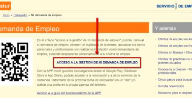 mi_demanda_de_empleo_-trabjastur